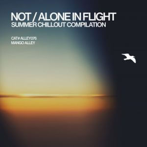 Not/Alone in Flight (MP3)