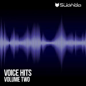 Voice Hits Vol.2 (MP3)
