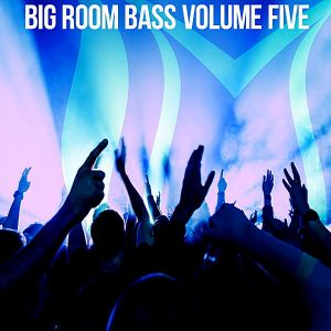 Big Room Bass Vol.5 (MP3)