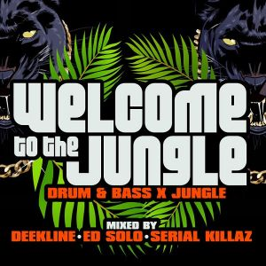 Welcome to the Jungle [Drum & Bass X Jungle]