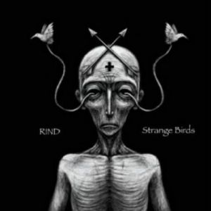 Rind - Strange Birds (MP3)