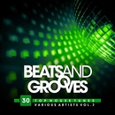 Beats And Grooves [30 Top House Tunes] Vol.3