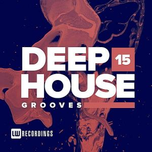 Deep House Grooves Vol.15